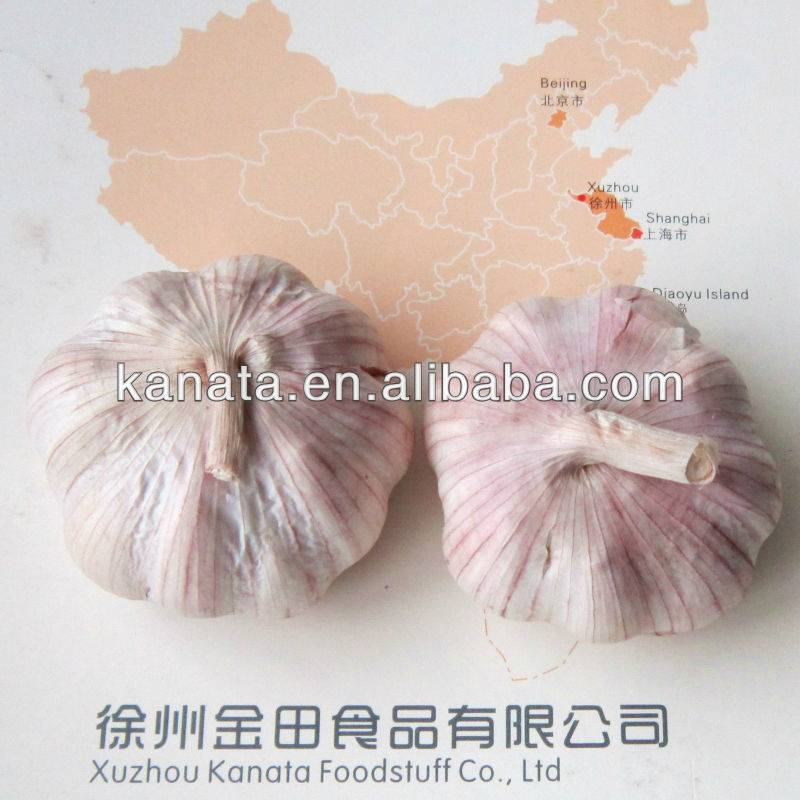 2013 china fresh red garlic supplier for Brazil market