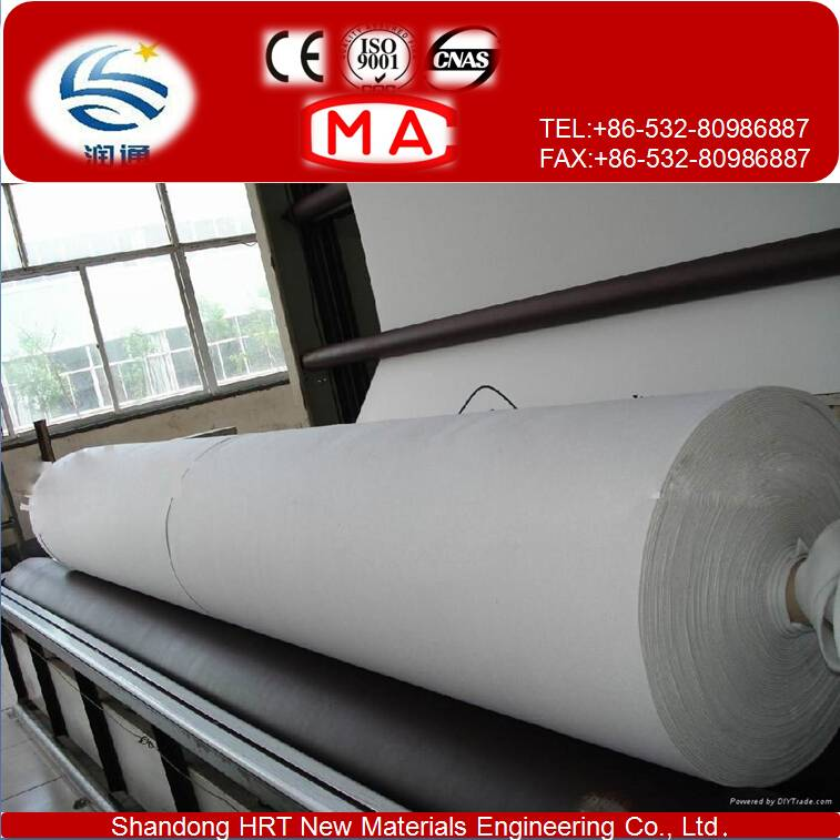 Filament Spundbonded Needle Punched Nonwoven Geotextile