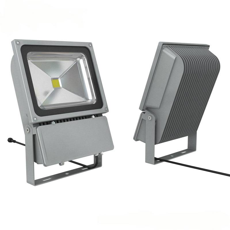 Outdoor Waterproof LED Floodlight 100W with CE RoHS SAA Certificate