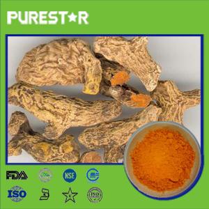 Turmeric Root Extract,Curcumin
