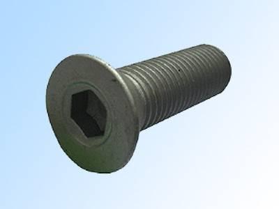 hex socket countersunk cap screw