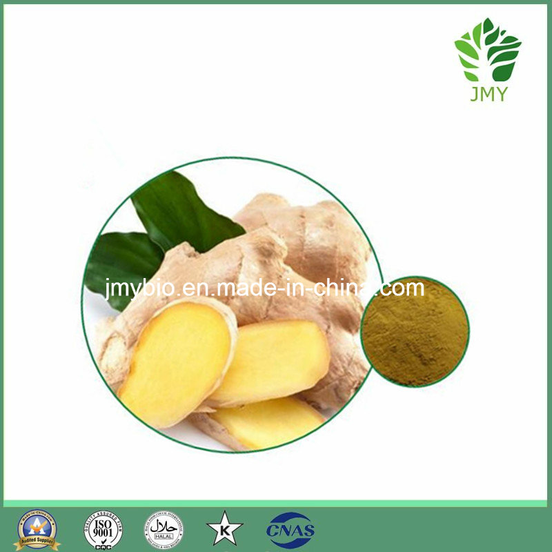 Pure Ginger Extract Gingerols 5% to 20%, Anti-Bacterial