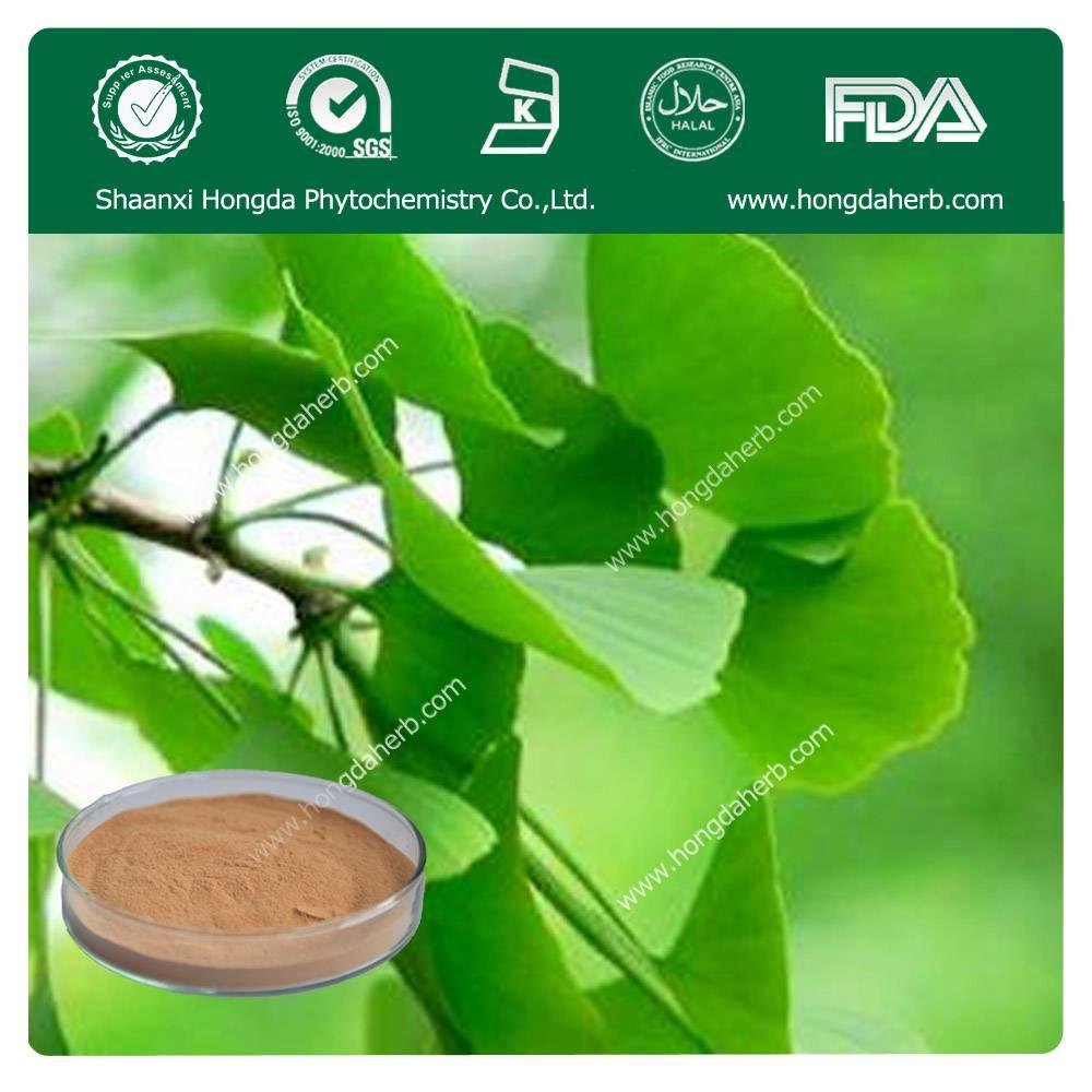 Ginkgo Biloba Leaf Extract 24%flavones+6%Lactones