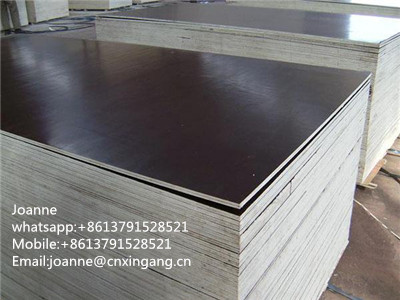 Film faced plywood with high quality WBP Glue waterproof
