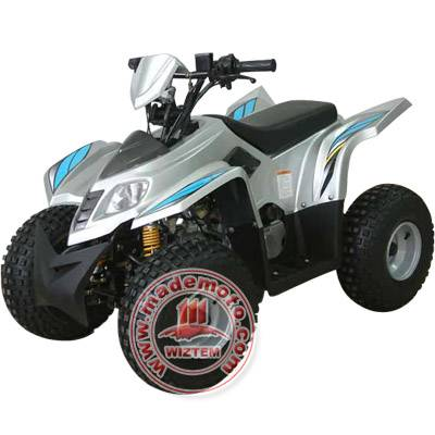 50cc Gas-Powered 4-Stroke Engine Quads Bike