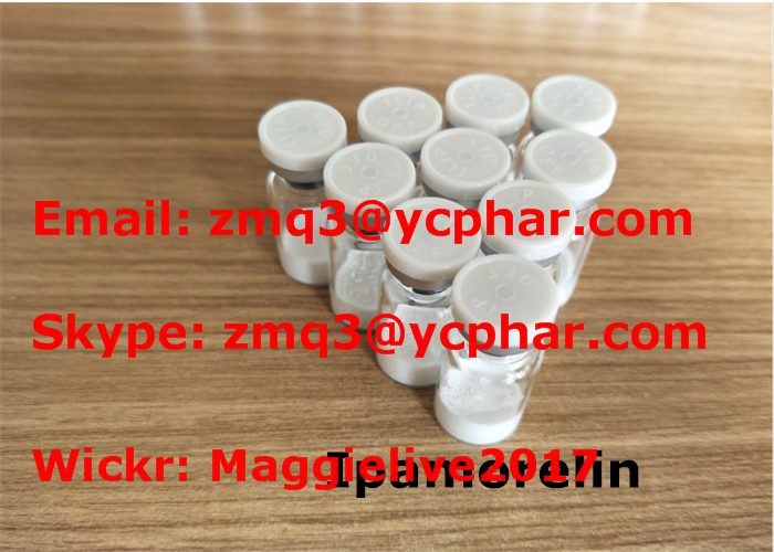 Anti Aging Injections Bodybuilding / Ipamorelin Polypeptide Hormones CAS 170851-70-4