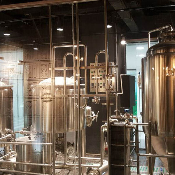 200L Craft Beer Brewery