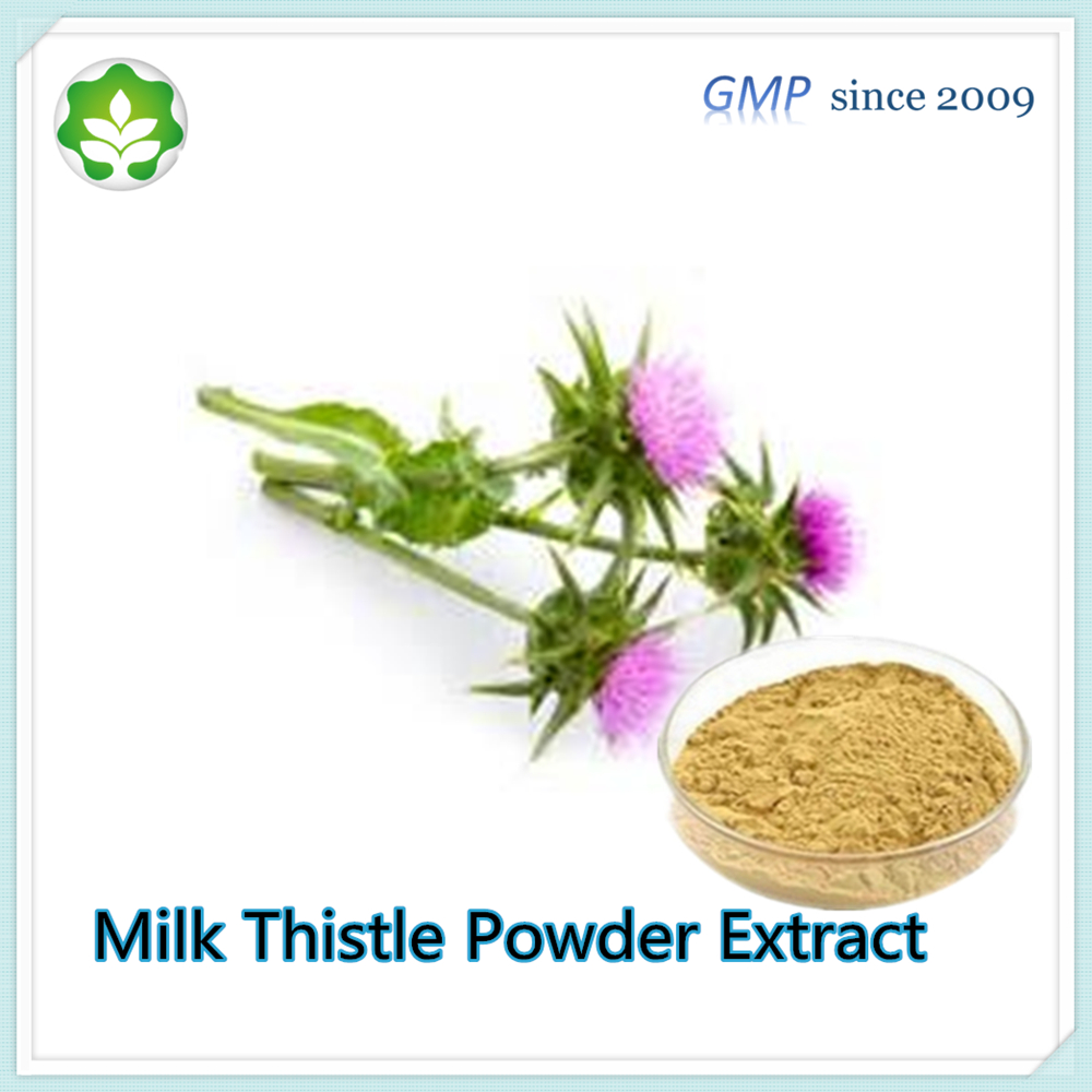 hot healthcare products silymarin extract powder