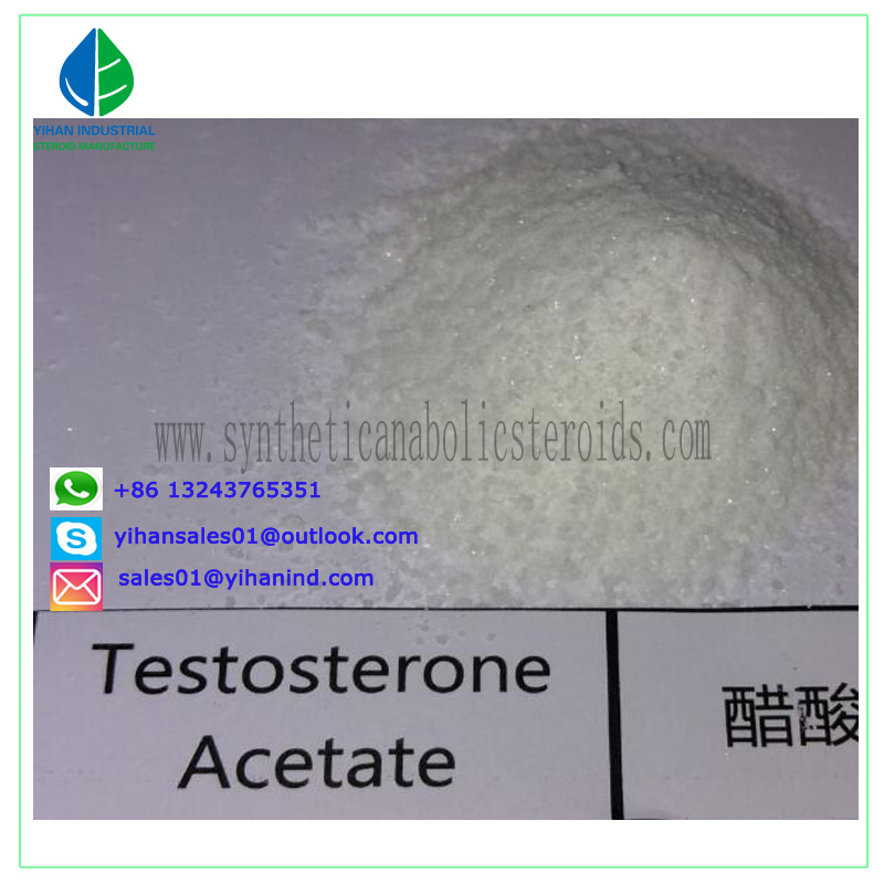 99% Anabolic Raw Steroid Hormone Powder Test Acetate/Testosterone Acetate (1045-69-8) safe ship Judy