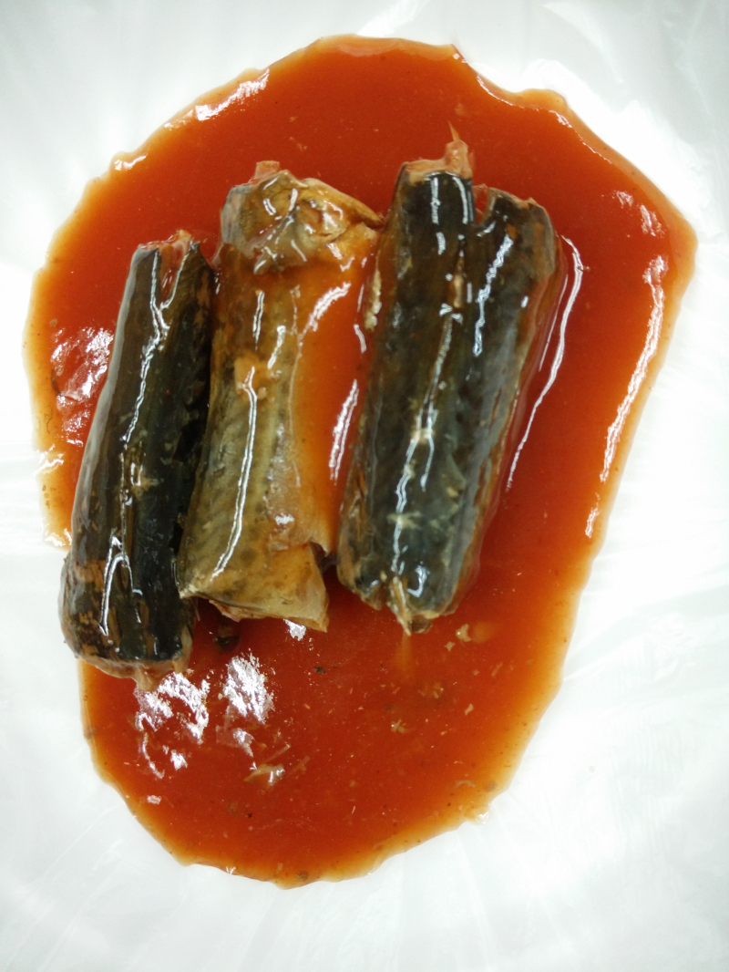 canned Mackerel in Tomato Sauce(155g/93g),canned fish manufatcurer, cylinder can, halal, haccp certi