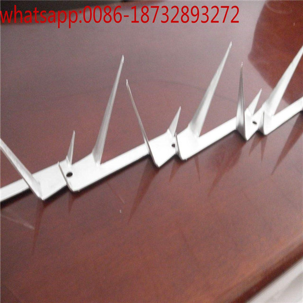 galvanized/pvc wall spike factory,home factory galvanized wall spikers