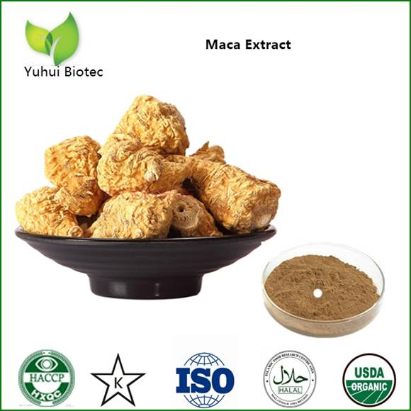 Maca Extract,maca root powder,maca root extract,maca powder,organic maca powder