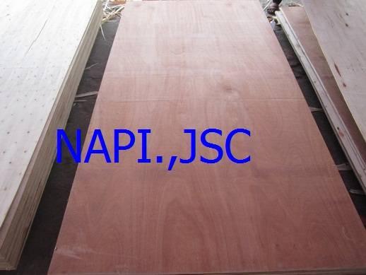Vietnam bintagor plywood from Vietnam
