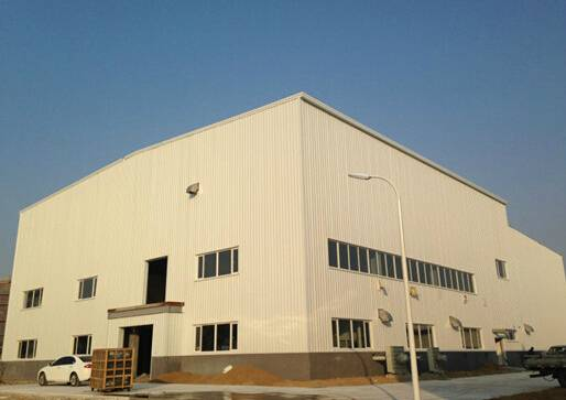 Large Span Light Steel Structure Building/Workshop