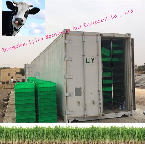 Automatic Mung Bean Sprout Machine Bean Sprout Growing Machine Wheat Sprout Machine