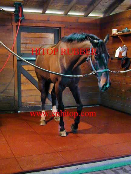 equestrian rubber tiles