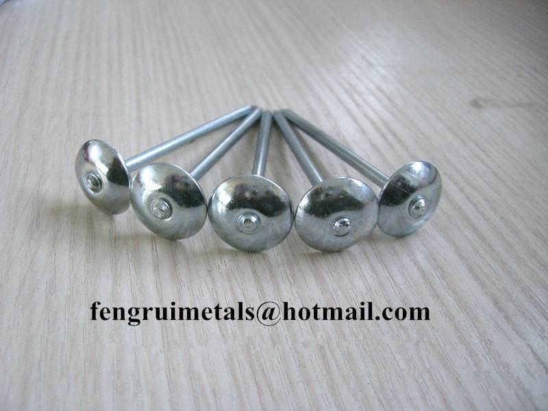 BWG12X2inch galvanized umbrella roofing nails