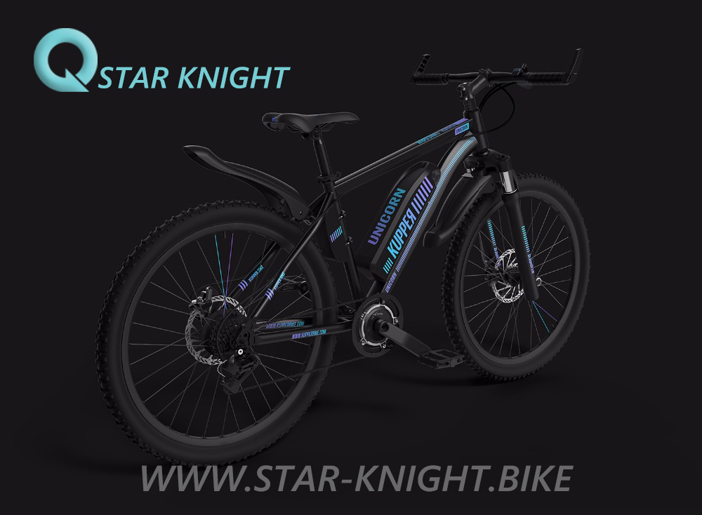 Good Quality E-Bike Stealth Bomber Cool Men Motor Bike