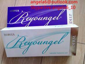 Reyoungel Injectable Hyaluronic Acid Dermal Filler