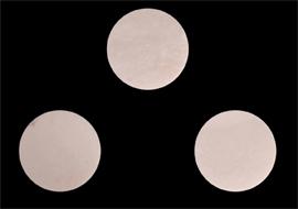 Animal Bone Button Blanks