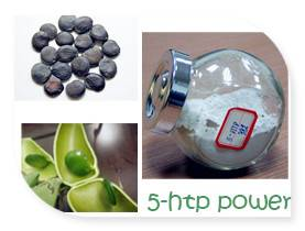 Griffonia Seed Extract 5-HTP powder