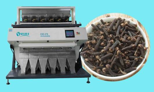 High accuracy 5000*3 pixel dehydrated clove Color Sorter with self checking system