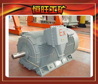 YB560-800 series high-voltage explosion proof three-phase asynchronous motor