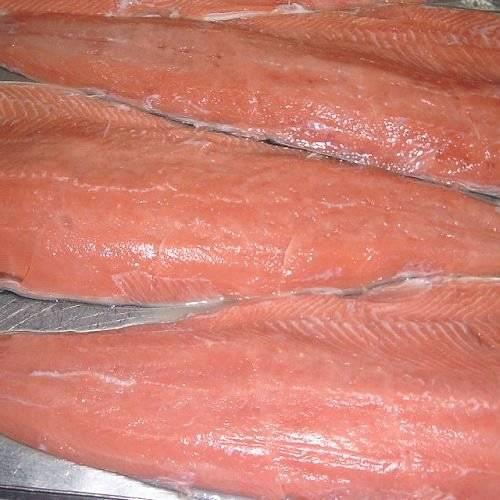 Frozen Chum Salmon Fillets