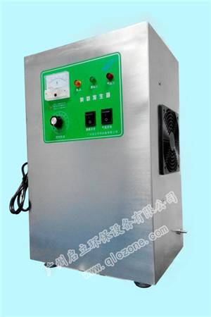 10G air and oxygen feeding ozone generator for swimming pool water treatment