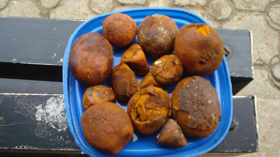 Ox Gallstones ,Cattle Gallstones ,Cow Gallstones,80/20 Cow/Ox/Cattle Gallstones