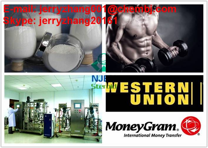 Super Qualified Cutting Cycle 98.25% Anti-Estrogen Steroid Hormone Testosterone Propionate /Test Pro