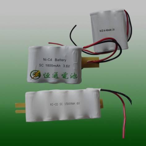 WALLY ni-mh battery pack