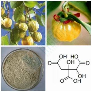 Hot Weight Loss Garcinia Cambogia Powder