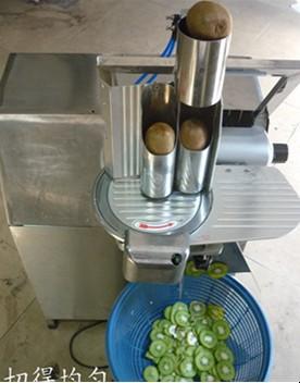 apple, lemon ,banana,ginder fruit slicer 0086 18625558161