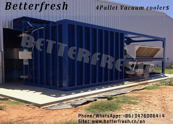 China Manufacturer Betterfresh Vacuum Coolers vegetable Freezer Forced Air Cooling Blast Chillers co