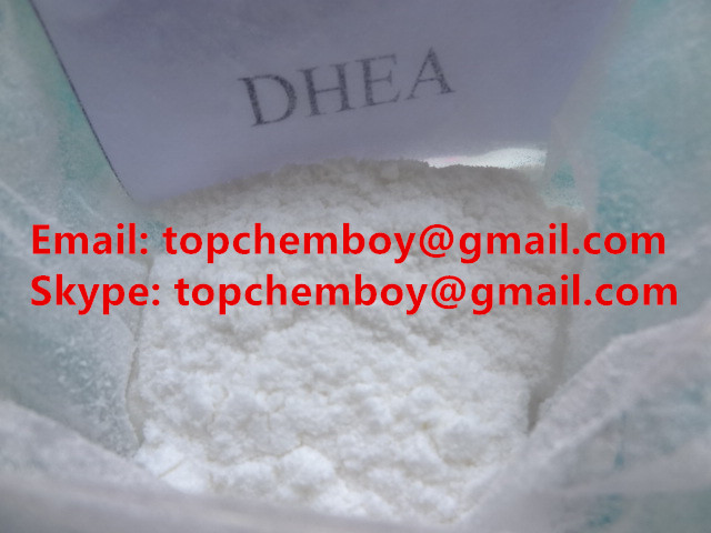 Dehydroepiandrosterone steriod powder supplier from China
