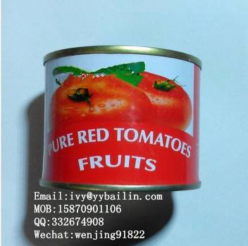 Factory Supply Canned Tomato Paste, Tomato Sauce,Ketchup