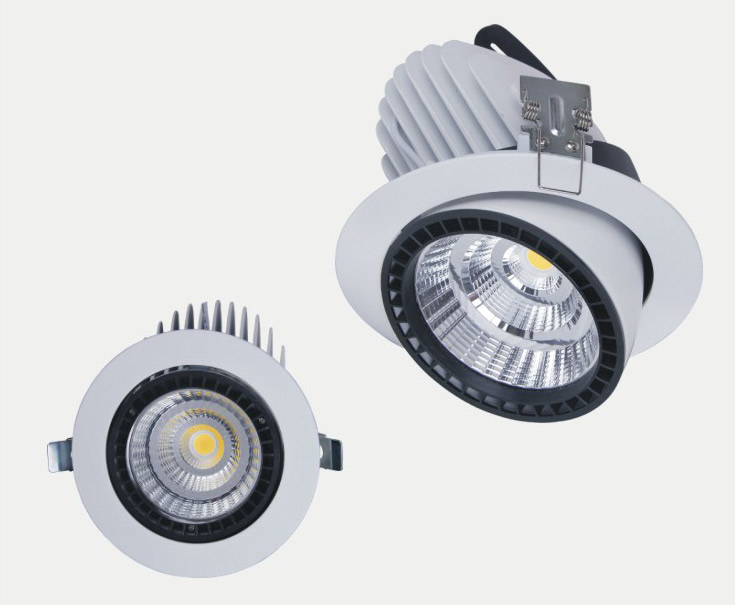 IP20 10W/15W/30W/50W led spot light CE ROHS led ceiling light input 85-265V in high quality and long
