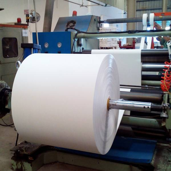 Singe side pe coated paper for cups making price