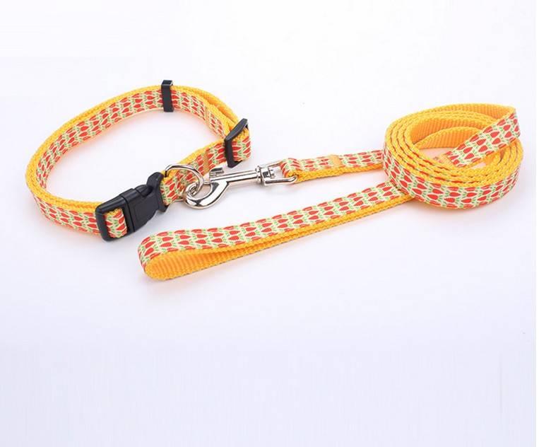 Custom High Quality PET Nylon Dog Collar