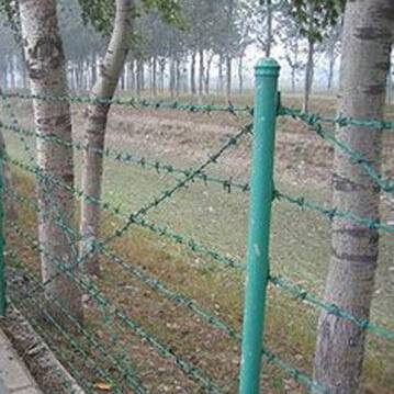 Electric galvanized barb wire fence