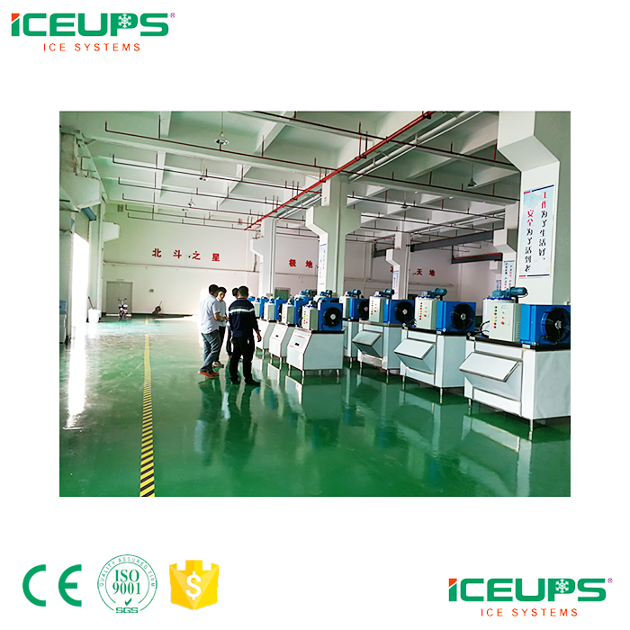 Dry ice making machine ice plant with CE