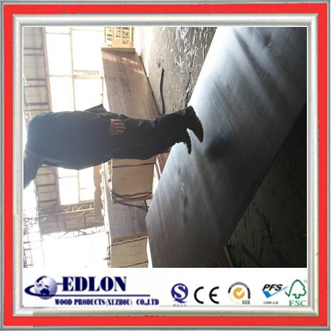 Best Quality 15MM Film Faced Plywood