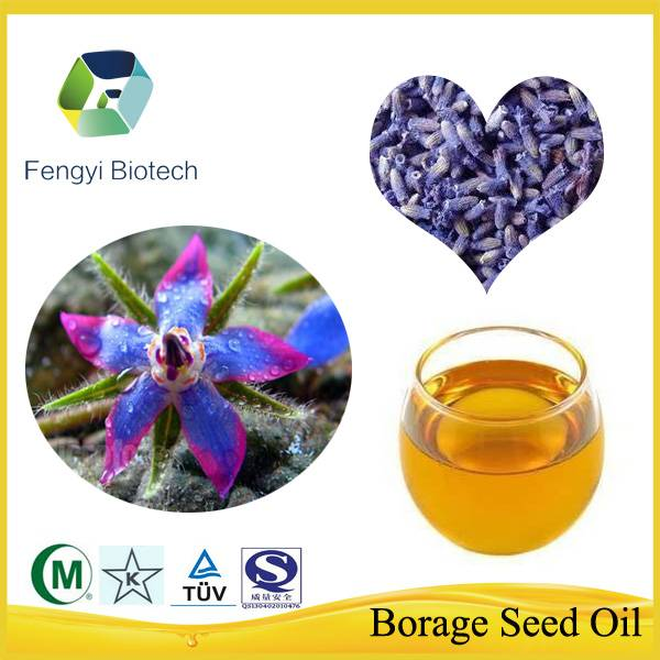 Bulk Natural Organic Refined Borage Seed Oil