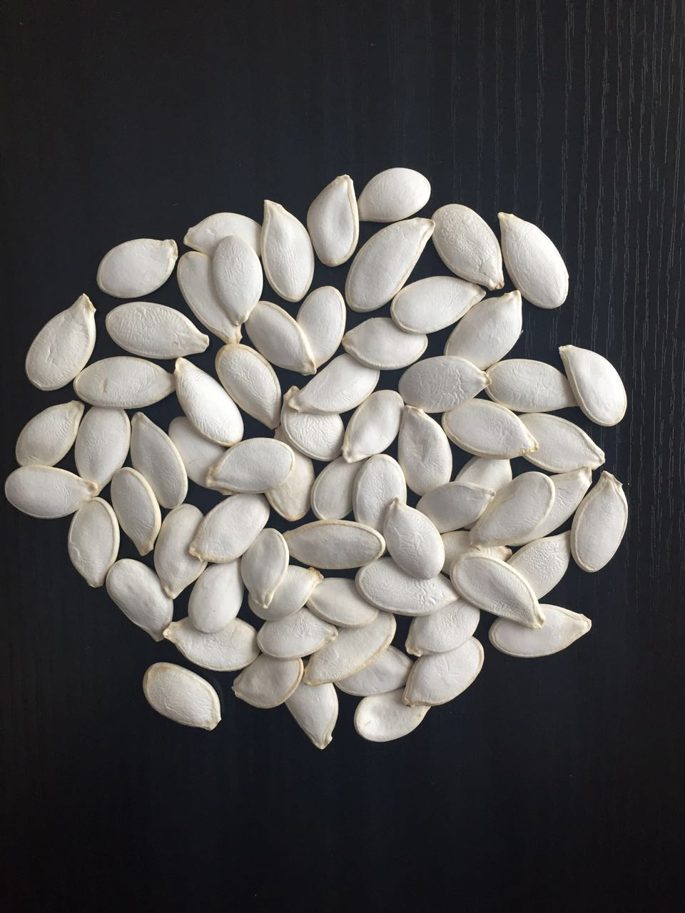 Chinese hotsale snow white pumpkin seeds 11/13cm