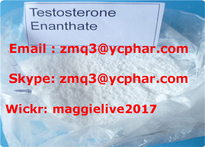Testosterone Enanthate for Fast Musle-Building Fast Shipping Steroid Powder
