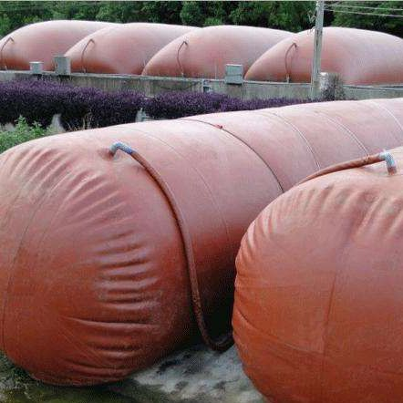 Well-known for its reliable quality portable biogas plant