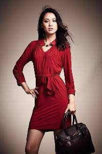 The Pretty Fashion Dress