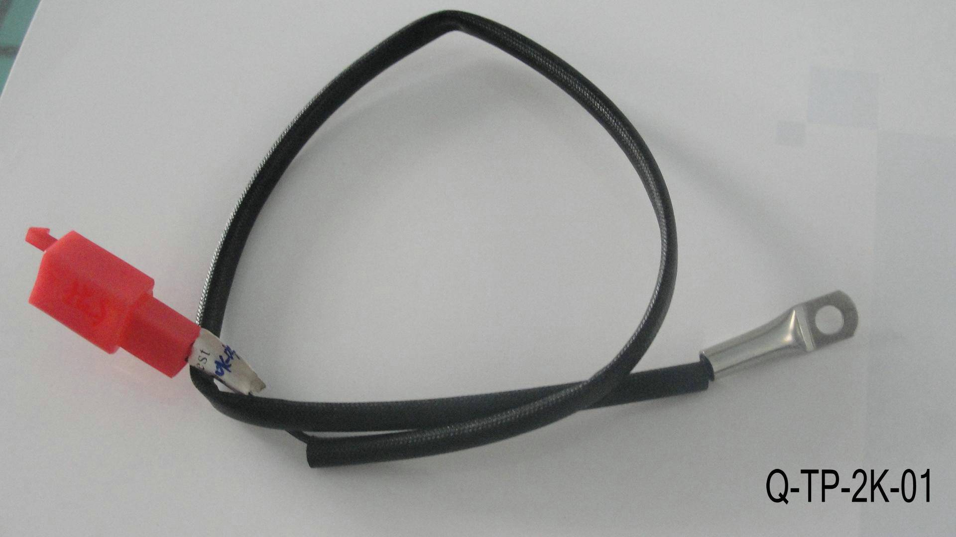 Temperature sensor Q-TP-2K-01