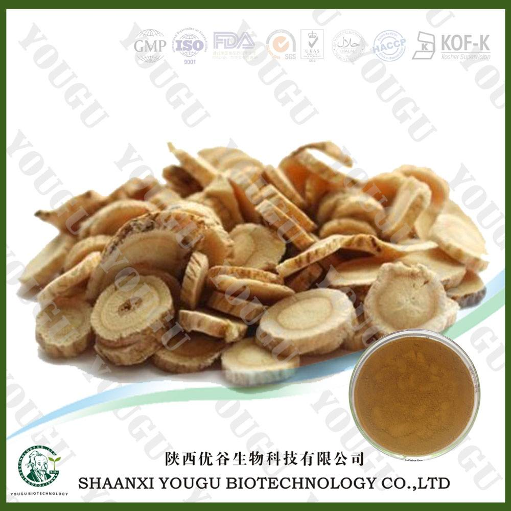 Astragalus Root Extract 40% Polysaccharases UV 0.2%-20% Astragaloside IV HPLC